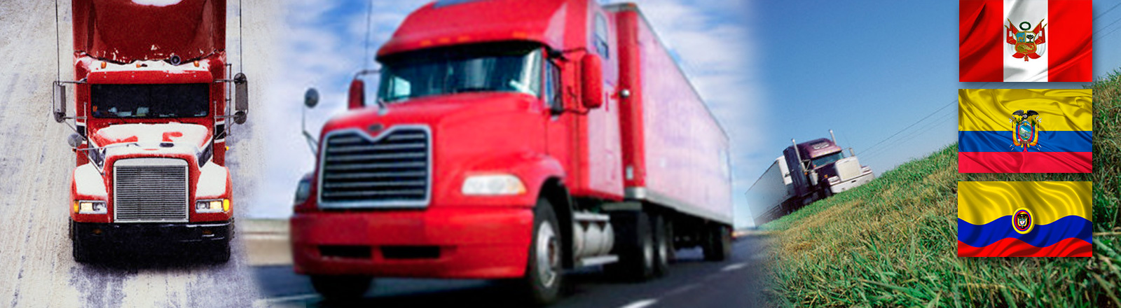 Servicio de Transporte Terrestre Internacional de Mercancías